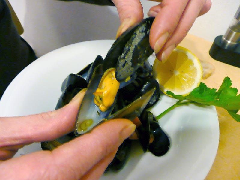 Miesmuscheln-in-Weinsosse-Besteck