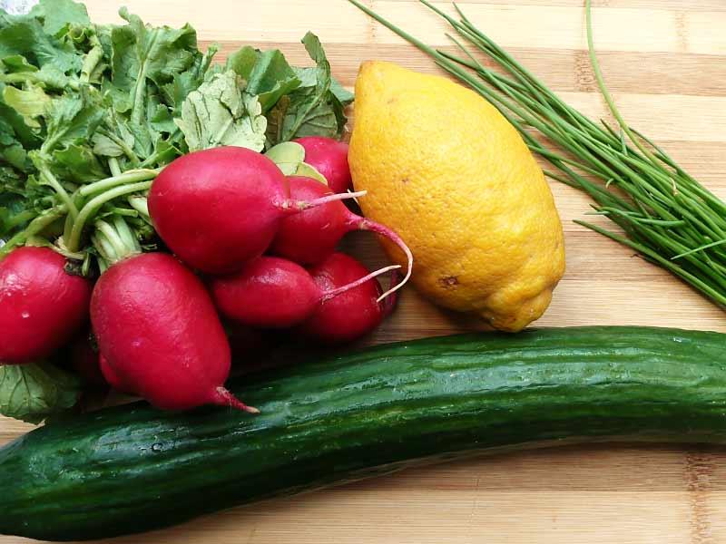 Gurken-Radieschen-Salat-Zutaten