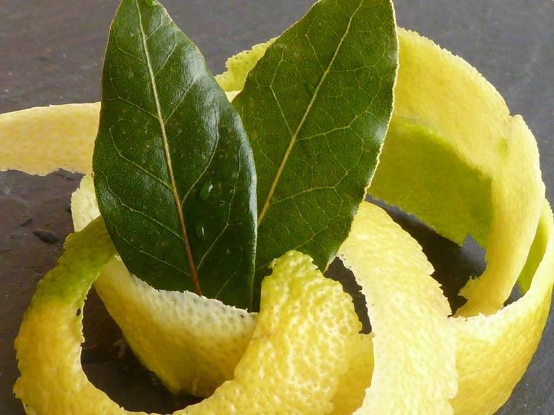 Zitronen-Lorbeertee