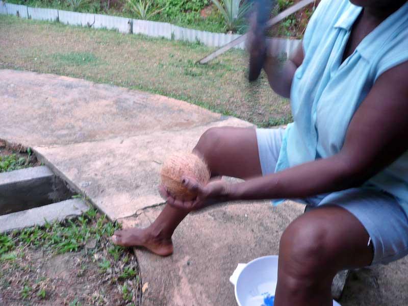 kokosnuss-oeffnen3