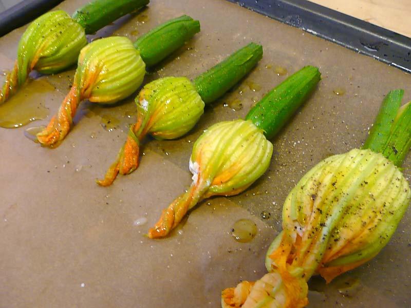 gefuellte-zucchini-blueten-auf-blech