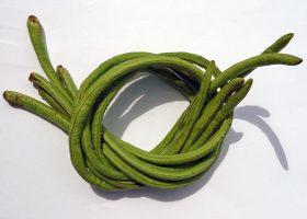 Schlangenbohnen